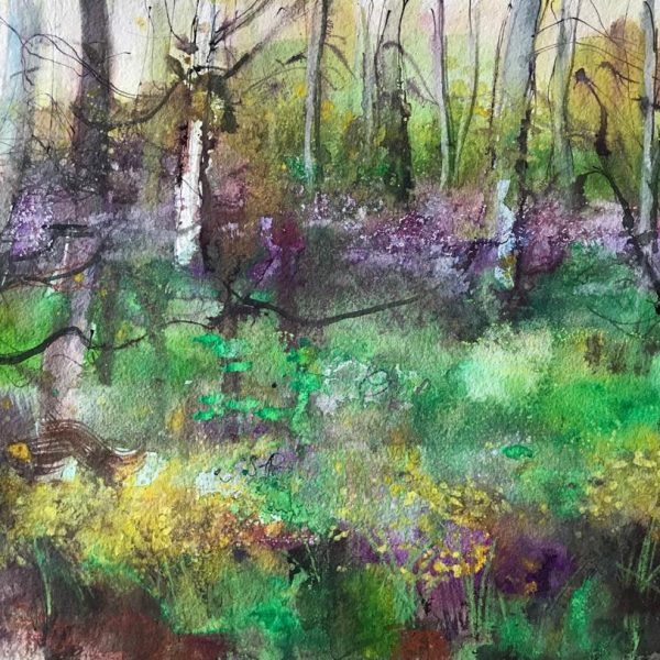 Ann Oram - Bluebells and Daffodils at Wemyss
