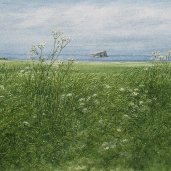 David E Johnston - Near Tantallon, June